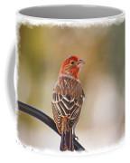 Male House Finch - Digital Paint And Frame Coffee Mug