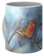 Male House Finch With Blue Texture Coffee Mug