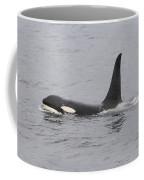 Male Killer Whale Coffee Mug
