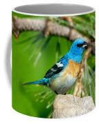 Male Lazuli Bunting Passerina Amoena Coffee Mug