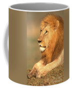 Male Lion Coffee Mug