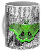 Male Moth Green Coffee Mug by Al Powell Photography USA
