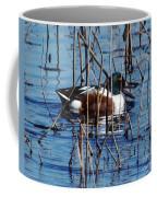 Male Northern Shoveler Lacassine Nwr Coffee Mug
