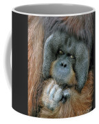Male Orangutan  Coffee Mug