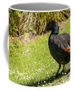 Male Paradise Duck Coffee Mug