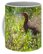 Male Ptarmigan Along Savage River Trail In Denali Np-ak Coffee Mug
