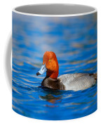 Male Red Head Duck Coffee Mug