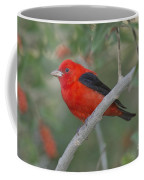 Male Scarlet Tanager Coffee Mug