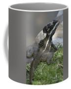 Male Striped Basilisk Coffee Mug by Heiko Koehrer-Wagner