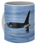 Male Transient Orca In Monterey Bay 11-10-13 Coffee Mug