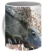 Mallard Awakening Coffee Mug