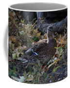 Mallard In The Grass Coffee Mug