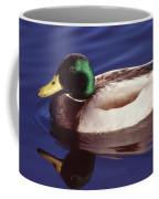 Mallard In The Mirror Coffee Mug