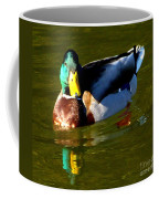 Mallard Male Duck Coffee Mug