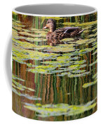 Mallard Pond Coffee Mug