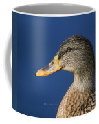 Mallard Queen Coffee Mug