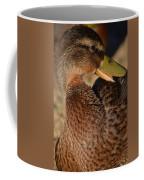 Mallard Youth 2 Coffee Mug