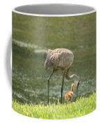 Mama And Chick Coffee Mug