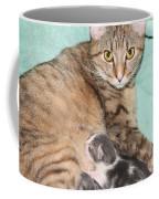 Mama Cat And Her Kittens Coffee Mug