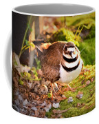 Mama Protecting Eggs Coffee Mug