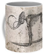 Mammoth Skeleton Coffee Mug