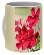 Mandevilla Named Sun Parasol Crimson Coffee Mug
