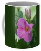 Mandevilla Pink 2013 Coffee Mug