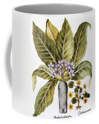 Mandrake And Buttercup Coffee Mug