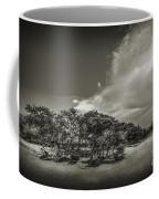 Mangrove At Low Tide Coffee Mug
