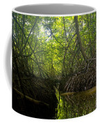 mangrove forest in Costa Rica 1 Coffee Mug