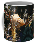 Mantids Hatch Coffee Mug