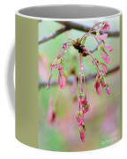 Maple Leaf Seed Pods   Coffee Mug