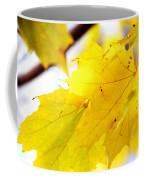 Maple Leaves At Autumn Glory 1 Coffee Mug