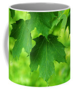 Maple Leaves Coffee Mug