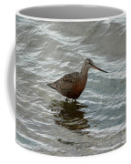 Marbled Godwit Coffee Mug