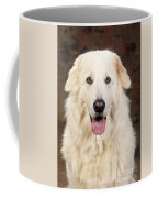 Maremma Sheepdog Coffee Mug