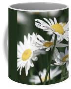 Marguerite Blossom Coffee Mug