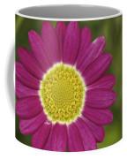 Marguerite Coffee Mug