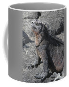 Marine Iguana  Amblyrhynchus Cristatus Coffee Mug