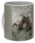 4m09150-02-marmot Fight Coffee Mug
