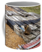 Marmot Resting On A Railroad Tie Coffee Mug
