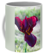 Maroon Iris Coffee Mug