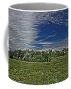 Marred Beauty Flight 93 Coffee Mug