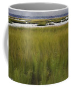 Marsh At Milford Point Coffee Mug
