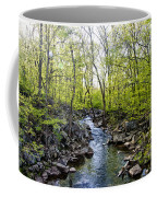 Marsh Creek In Spring Coffee Mug