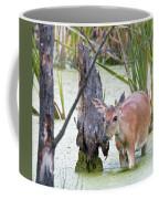 Marsh Doe I Coffee Mug