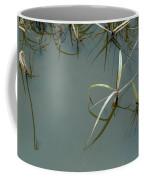 Marsh Reflections Coffee Mug