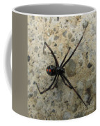 Maryland Black Widow Coffee Mug