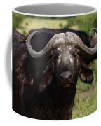 Masai Mara Buffalo Coffee Mug