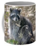 Masked Bandit Coffee Mug